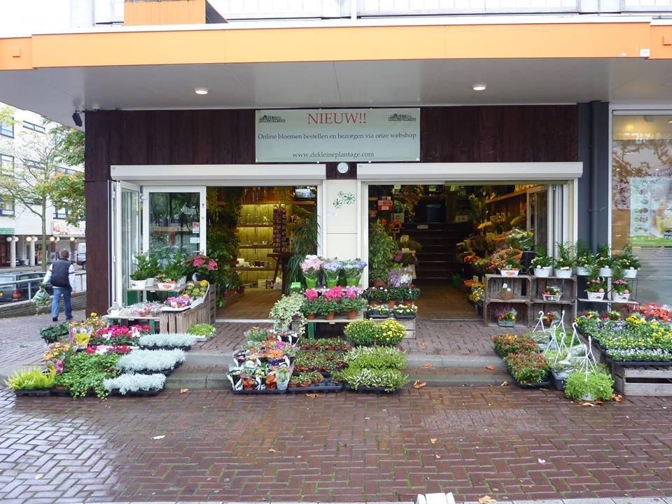 Bloemenwinkel de kleine plantage rotterdam for Bioscoopagenda rotterdam